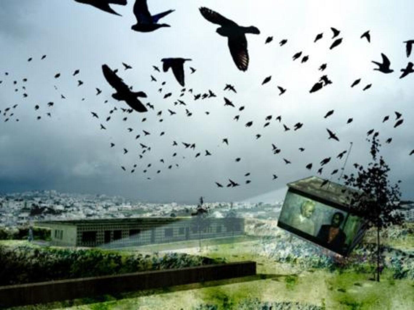 Palestine: Return to Nature